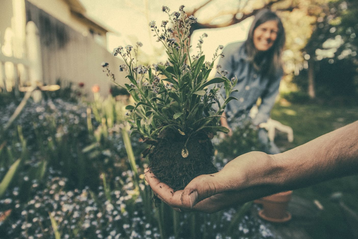 duurzaam in tuin
